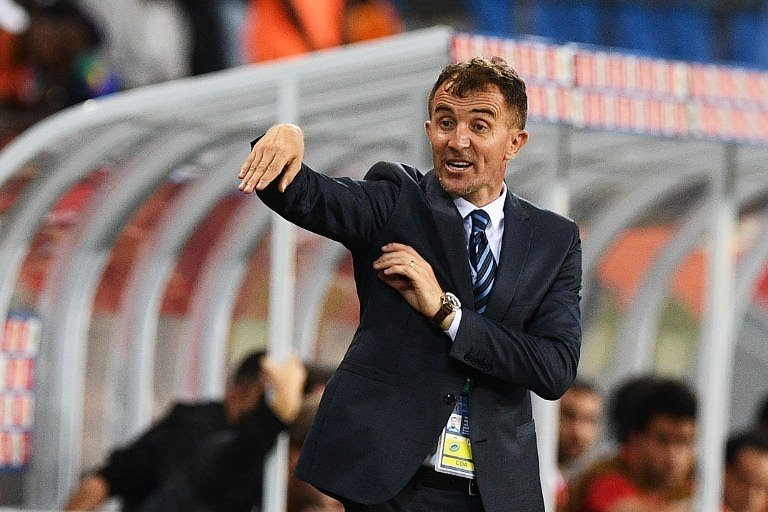 Milutin 'Micho' Sredojevic was coach of Egypt's Zamalek for less than six months